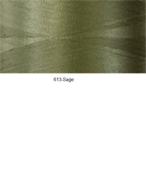 613-sage