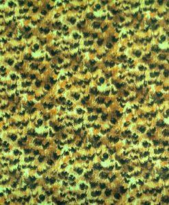 Cheetah Skin