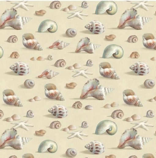 Coastal Bliss Shells